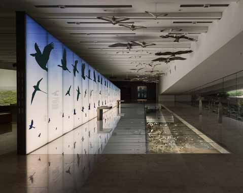 ACCIONA Producciones y Diseño debuts in Kuwait with two museums on the history and nature of the country