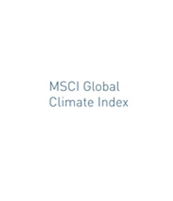 MSCI Global Climate Index