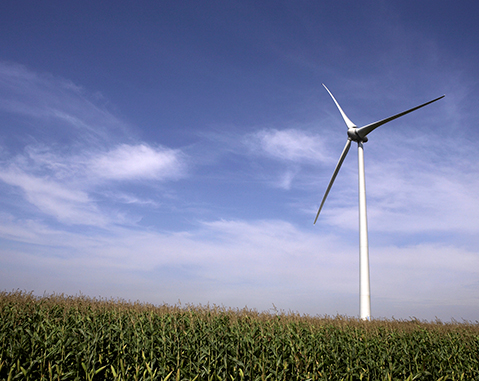 ACCIONA acquires additional stake in Ontario wind farm (Canada)