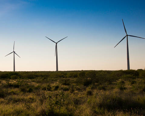 ACCIONA to build Mexico's largest wind farm in Tamaulipas