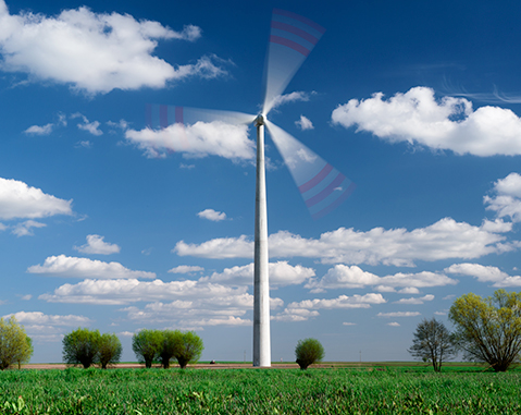ACCIONA urges companies to adopt its carbon neutrality model