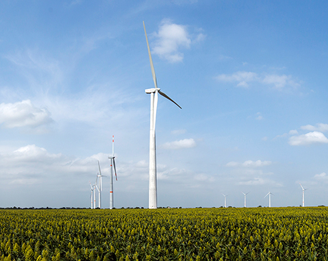 ACCIONA starts up its first wind farm following the Energy Reform in Mexico
