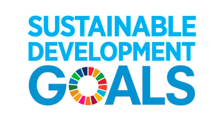 What are the Sustainable Development Goals (SDGs)?