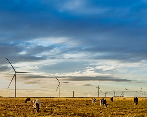 ACCIONA is awarded a wind farm in Victoria (Australia), an €177 million investment