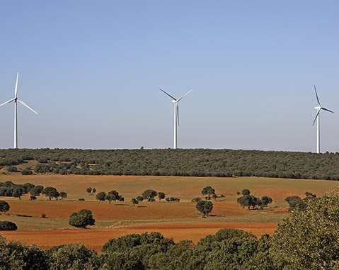 ACCIONA strenghtens its leadership as the biggest retailer of 100% renewable energy in the Spanish market