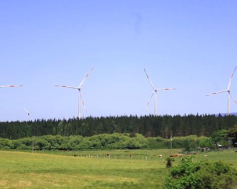 ACCIONA, compañía eléctrica más verde del mundo por quinto año consecutivo