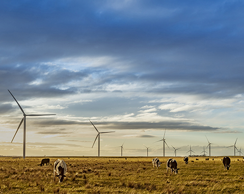 ACCIONA to build a 1,026MW wind farm in Queensland