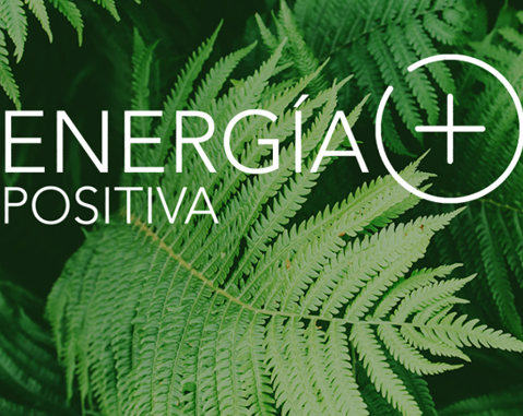 Positive Energy+ receives almost 400 innovative projects to alleviate the economic and social impact of coronavirus