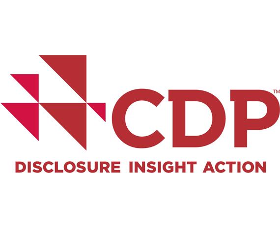 CDP Europe Award 2019